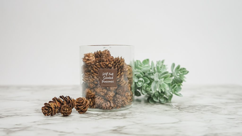 diy fall scented pinecones made with essential oils
